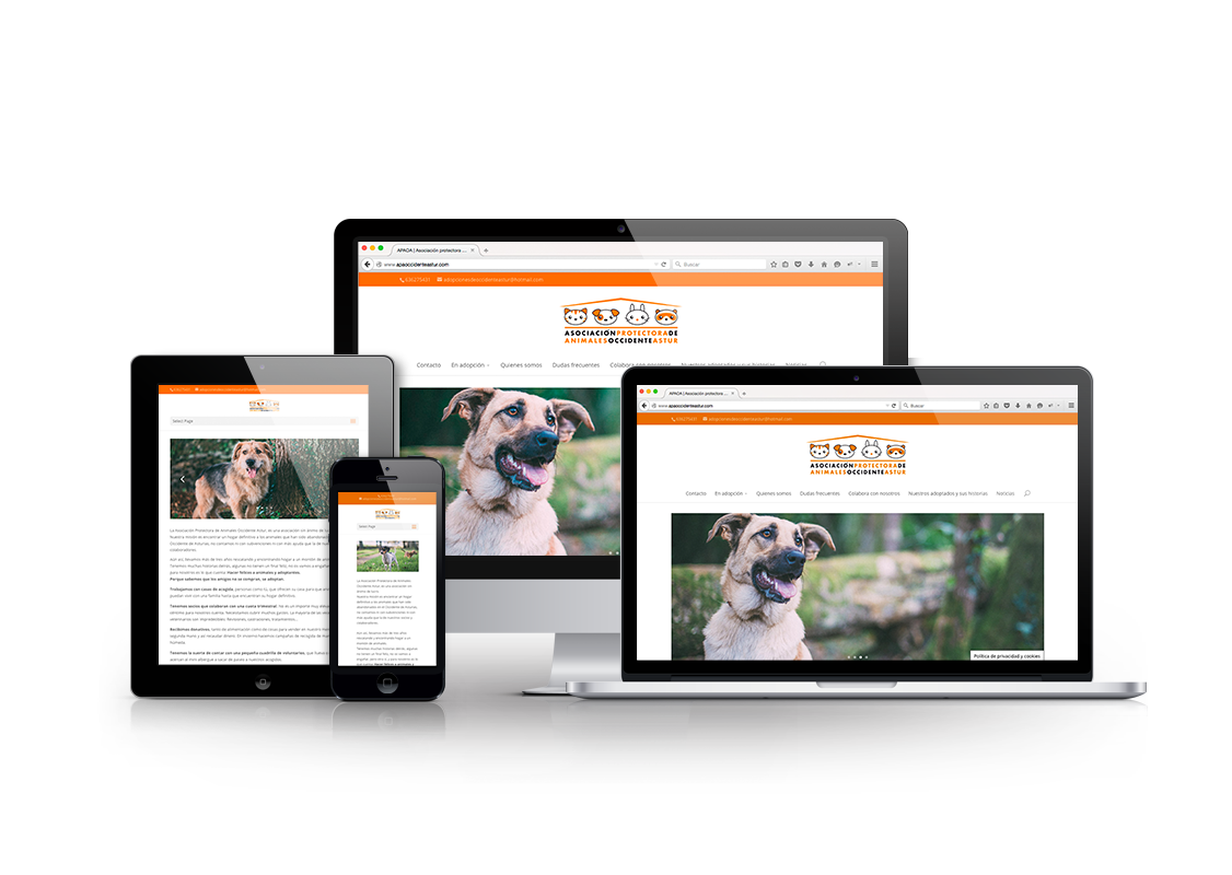 web protectora de animales occidente astur